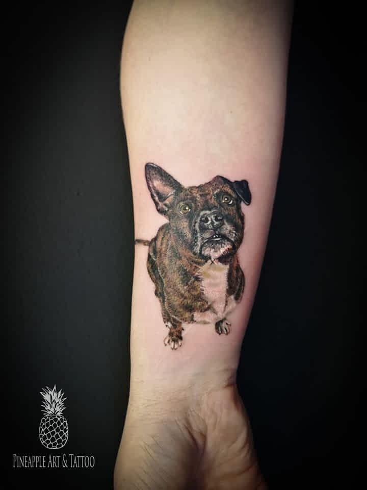 Mini Tattoo realističnega psa, tetover Pineapple TATOO Maribor